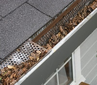 Gutters Clogged With Leaves and Dirt
