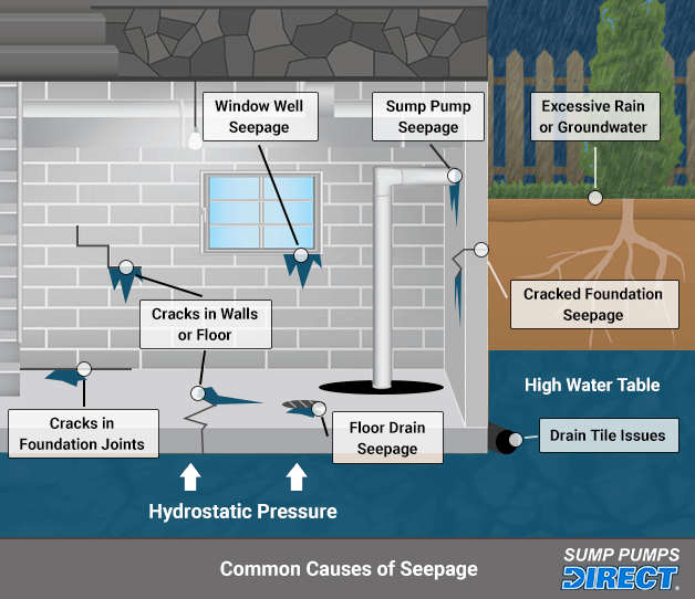 infographic showing common sources of basement leaks